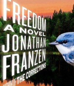 Another Week Ends: Franzen's Freedom, Strippers at Church, Hairdryers, Gender Jokes, Sufjan and Arcade Fire