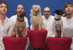 OK Go — With Friends