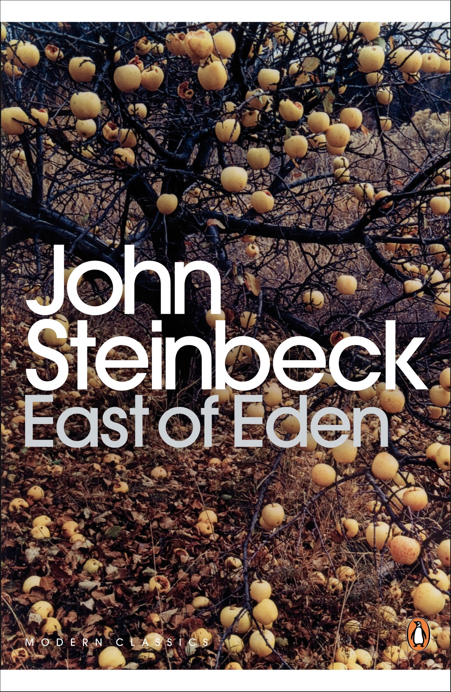 how does steinbeck emphasise the unusual Of mice & men study guide  why does slim find george and lennie's relationship unusual  what words does steinbeck use to emphasize the smallness of crooks.