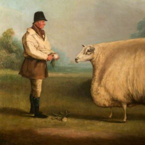 Sheep at the Center