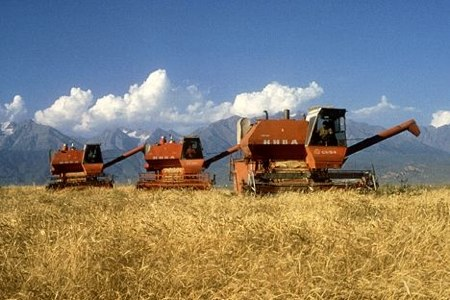original_KAZAKHSTAN_Wheat_Harvest