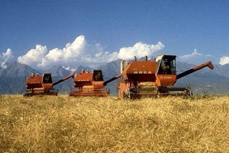 original_KAZAKHSTAN_Wheat_Harvest