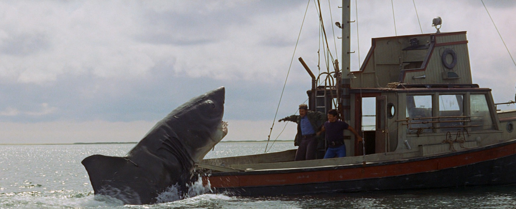 jaws15658