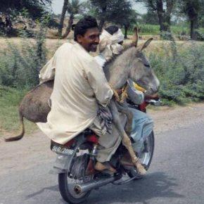 He Rides On – David Zahl