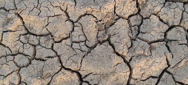 Summer in Omelas: What Are We to Do With All This (Climate) Grief? Part 2